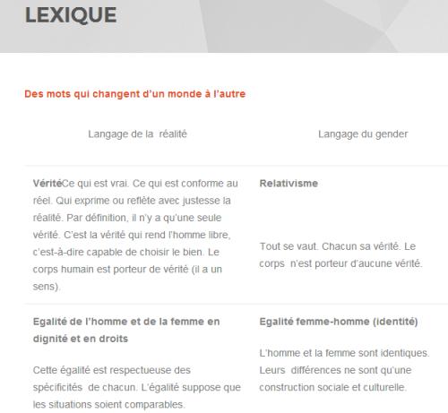 Lexique du site Vigi Gender (cliquer pour y accéder)