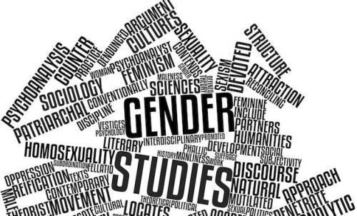 wordle gender studies
